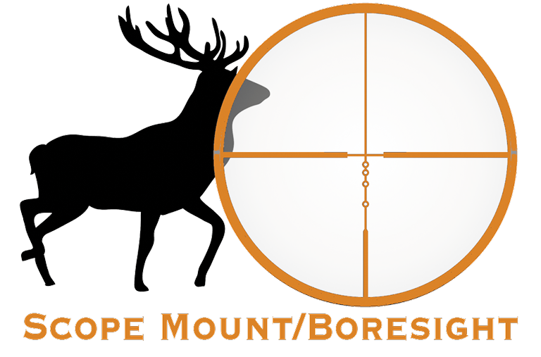 Scope Mounted/Borsight